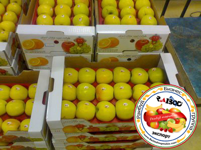 صادرات سیب زرد