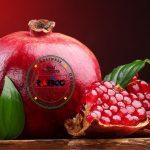 صادرات و فروش انار