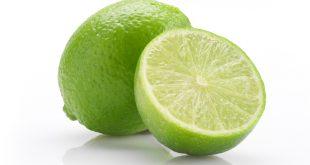 صادرات میوه لیمو ترش