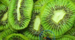 صادرات انواع میوه خشک باکیفیت