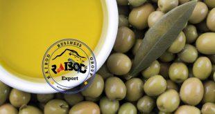 صادرات و ترخیص زیتون