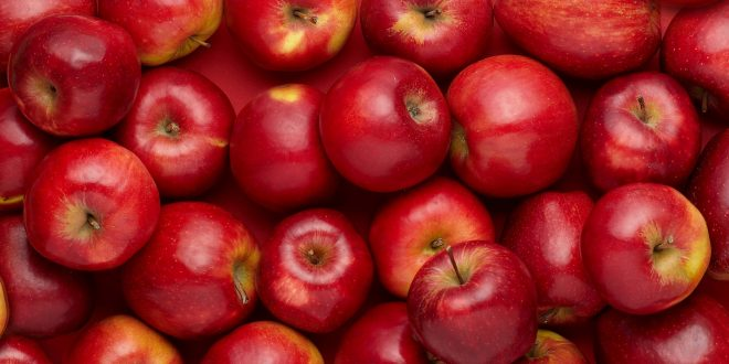صادرات سیب قرمز