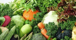 صادرات سبزیجات ارگانیک