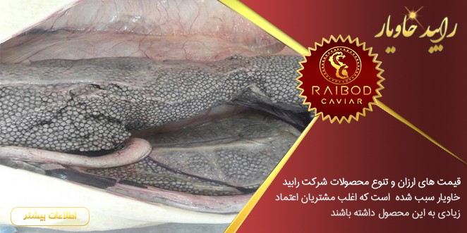 تولید کننده خاویار درجه یک در ایران