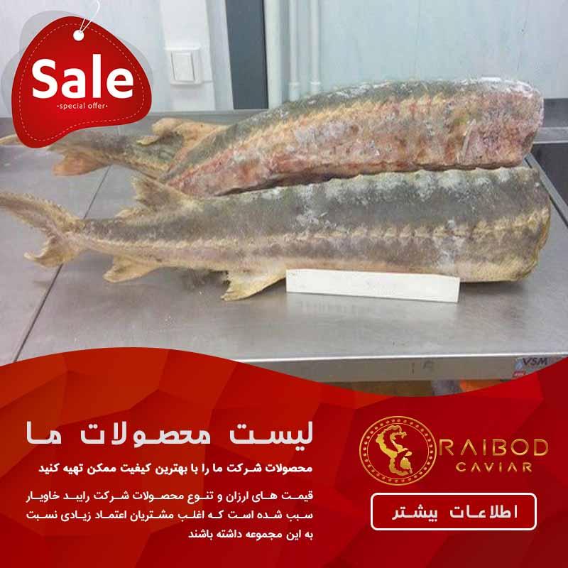 کارخانه بسته بندی ماهی خاویار